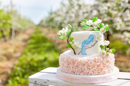 Elegant wedding or birthday cake decorated with pink ruches and apple blossom branch and blue bird. Anniversary cake in a spring apple garden Stock Photo