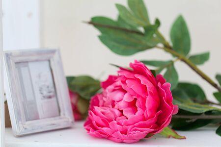 Spring studio decor, light home decor, romantic interior for a spring session Stockfoto - 128781484