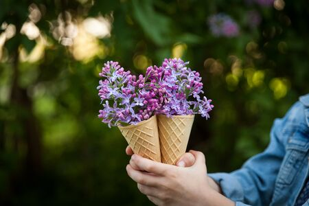 Creative bouquet of purple lilac flower in ice cream cone in the girl's hands. Spring or summer concept Foto de archivo