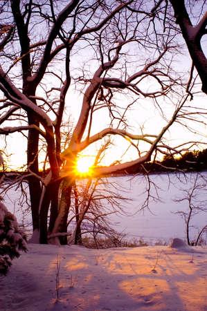 winter sunrise: winter lakeshore sunrise Stock Photo