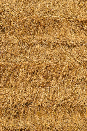 nahaufnahme: Detail of a straw bale