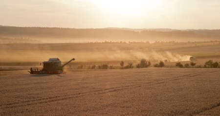 Grain harvest with a combine harvester , late summer in Austria