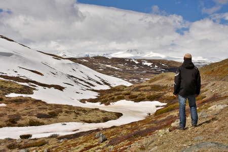 raod: Dovrefjelll, Norway - June 4, 2015: Hiker gazing into the highlands of Dovrefjell National Park, Norway in spring. Editorial