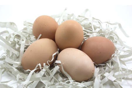 Brown eggs on the paper 