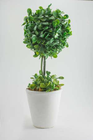 plastic bush tree Stock Photo - 21675669
