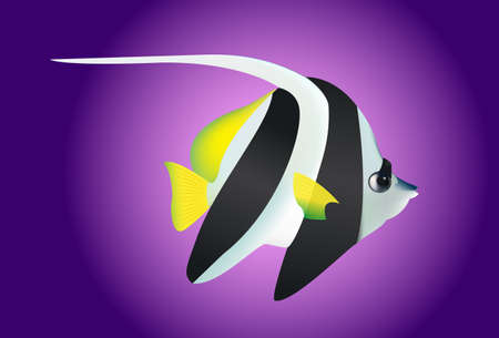 angel fish: Cute black and white angel fish clip art isolated Illustration