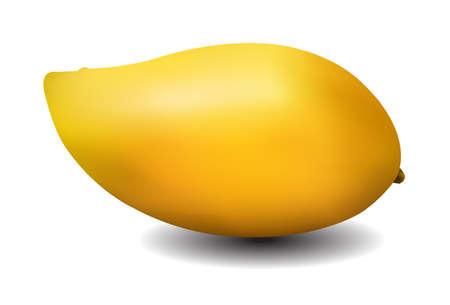 mango: żółty mango na fioletowym tle