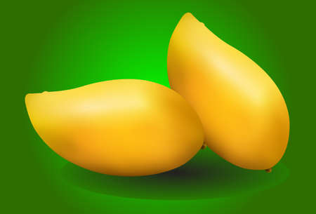 mangoes: yellow mangoes on green background