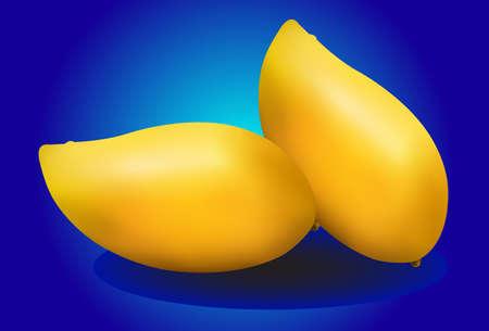 mangoes: yellow mangoes on blue background Illustration