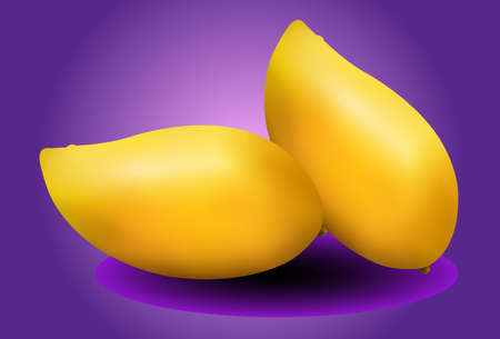 thai dessert: yellow mangoes on purple background Illustration