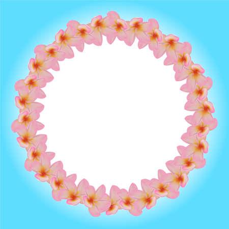 fragrant bouquet: Frangipani flowers
