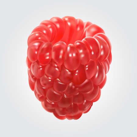 illustration of raspberry. Stok Fotoğraf - 62114043