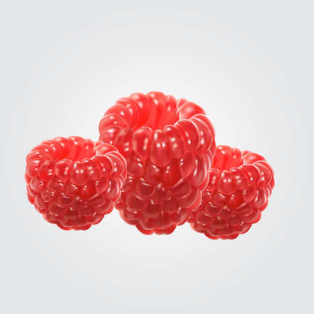 illustration of raspberry. Ilustrace