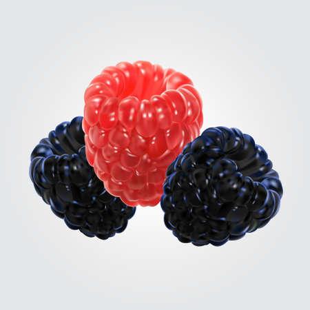 Vector illustratie van raspberry.blackberry Stock Illustratie