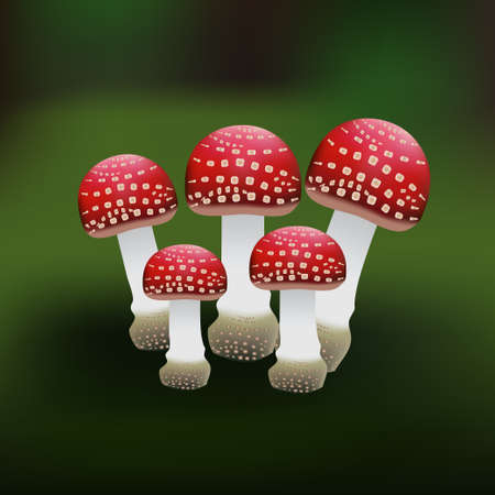 macroscopic: Illustration of a red mushroom on a green background