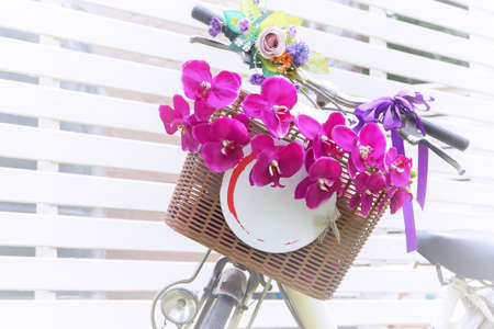 flower in basket of vintage bicycle on vintage wooden house wall Stock Photo