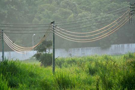 linemen: Power lines image, Stock Photo