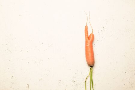 Ugly carrots on a white cracked surface. Ugly food concept, top view.