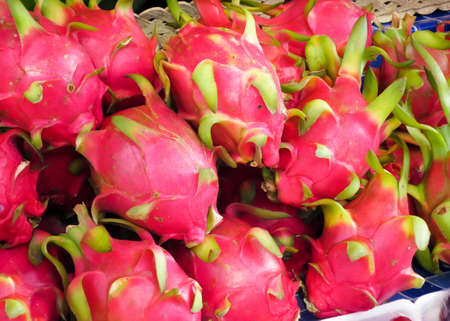 Laying Dragon fruit in the tray store.