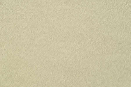 Ivory Artificial artificial leather with large texture, background.