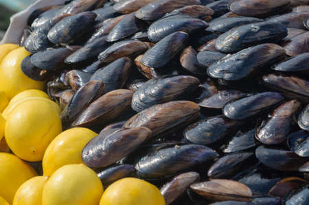 Mussels and lemon at a street food market in Istanbul, Turkey. Banco de Imagens