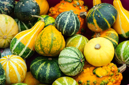 Bright yellow and green pumpkins at a street market in Istanbul, Turkey.