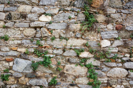 An old stone wall overgrown with grass.