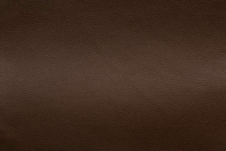 Brown leather texture with light stretch.