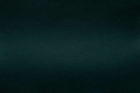 The leather texture dark green color, background. Imagens