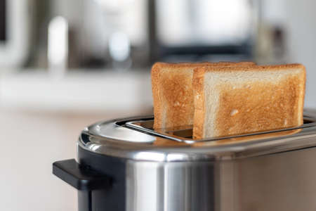 Two fried slices of bread in a toaster oven, shallow depth of field.