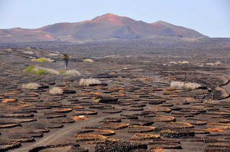 Barren volcanic landscape on spanish island Lanzarote Stock Photo