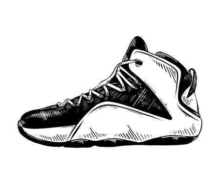 Vector engraved style illustration for posters, decoration and print. Hand drawn sketch of basketball sneaker in black isolated on white background. Detailed vintage etching style drawing.