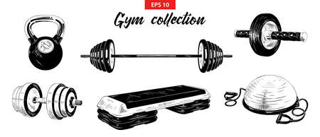 Vector engraved style illustrations for posters, logo, emblem and badge. Hand drawn sketch set of gym and fitness equipment, weight, dumbbell, bosu ball and step-platform. Detailed vintage etching 向量圖像