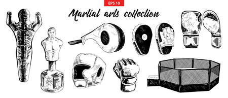 Vector engraved style illustration for posters, decoration. Hand drawn sketch of mixed martial arts and boxing set isolated on white background. Detailed vintage etching drawing. 矢量图像