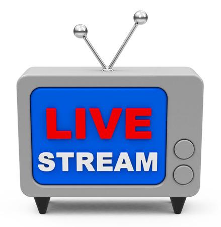 live stream: the live stream