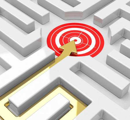 bull s eye: target in a maze