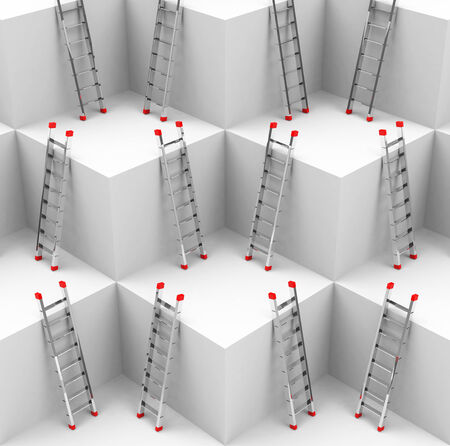 the ladders photo
