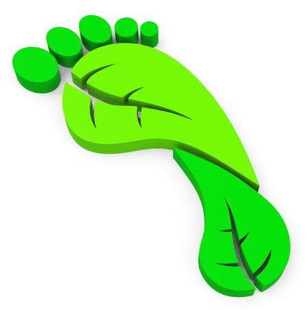 green footprint: the green footprint