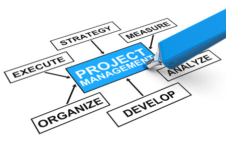 project management: project management