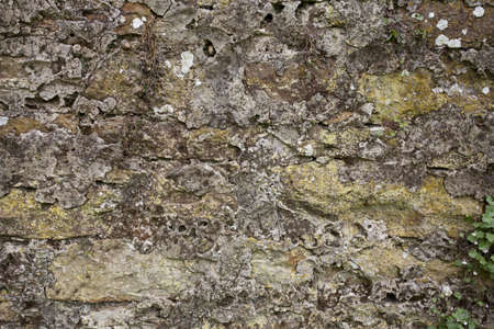 Old stone wall with lichens