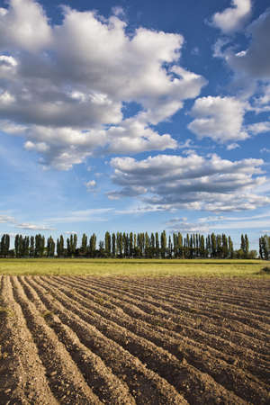 Plowed field and cloudscape on the plains of Castilla y Leon  Valladolid, Spain  Stock Photo