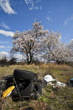 Landfill with tires and trees in spring Stock Photo