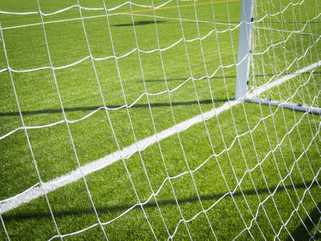 Goal line of a soccer grass field
