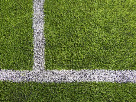 sideline: Limit lines of a sports grass field