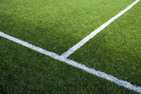 grass area: Limit lines of a sports grass field