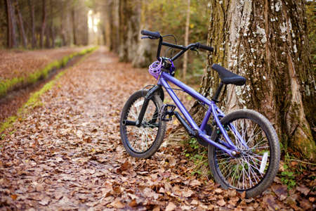 A bike resting on autumn walk. Selective focus. photo