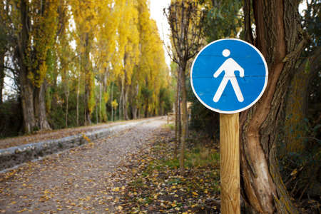 Pedestrian crossing sign on a forest trail Stock Photo - 16755737