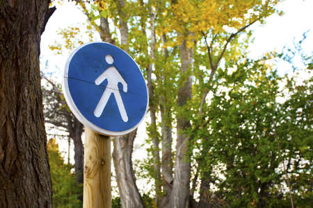 Pedestrian crossing sign on a forest trail Stock Photo - 16755738