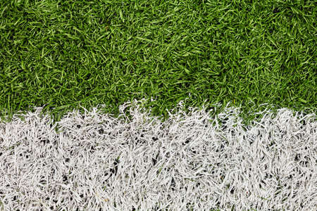Soccer Field Line detail for Backgrounds or Texture  Macro shot