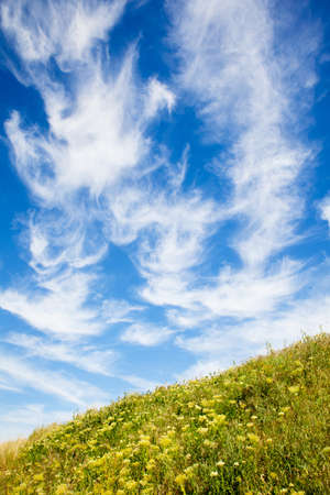 Beautiful cloudscape over green meadow and blue sky